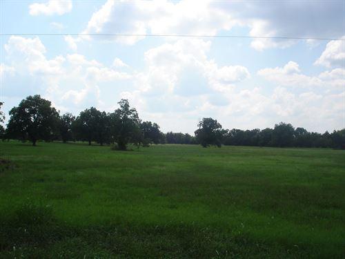 Country Acreage Building Site : Pattonville : Lamar County : Texas