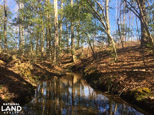 Mt. Pisgah Recreational Acreage : Kershaw : South Carolina