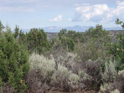 7.5 Acres Mt Blanca Valley Ranch : Blanca : Costilla County : Colorado