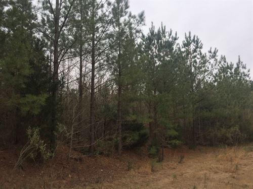 Welch Road Properties : Robbins : Moore County : North Carolina
