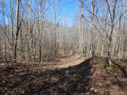 87 Ac Excellent Recreational Prop : Hurricane Mills : Humphreys County : Tennessee