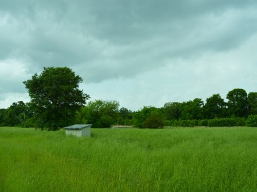 7+ Acres In Rains County : Emory : Rains County : Texas
