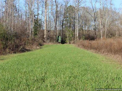 Great Rec/Estate Tract : Wesson : Copiah County : Mississippi