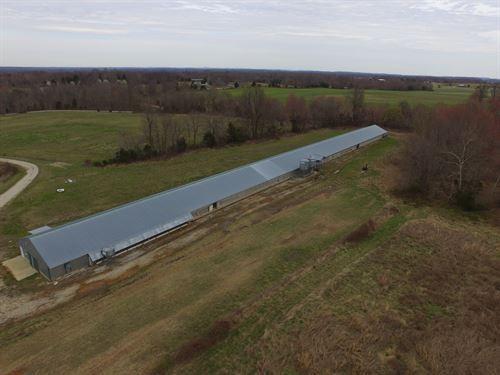 31 Acre Farm In Barren County, Ky : Cave City : Barren County : Kentucky