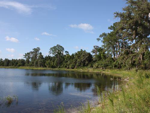210 Acres Of Deep Creek Ranch : De Leon Springs : Volusia County : Florida