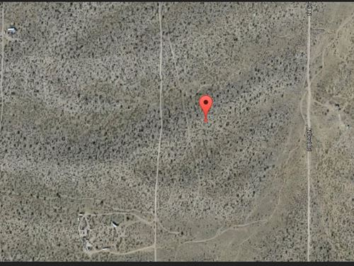 Mohave Co. Az $20,000 Neg Both : Dolan Springs : Mohave County : Arizona