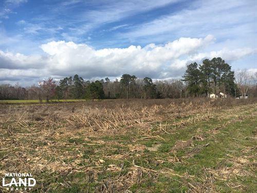 Red Bluff Home Site : Loris : Horry County : South Carolina