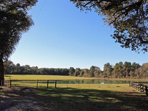 Poor S Ranch : Montgomery : Texas