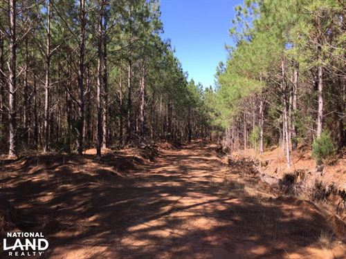 Snow Bottom Rd. 118 Acre Timber Tra : Eupora : Webster County : Mississippi