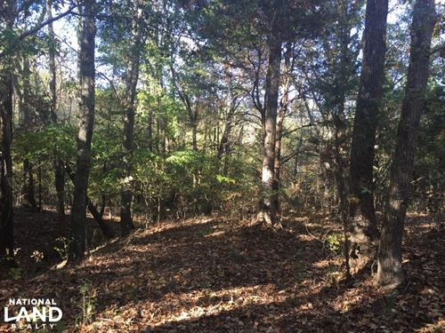 Recreational, Timberland, Homesite : Pontotoc County : Mississippi