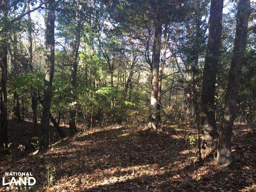 Recreational, Timberland, Homesite : Pontotoc : Mississippi