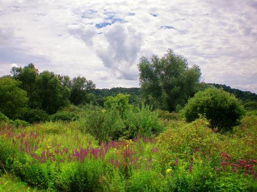 Trophy Deer And Waterfowl Property : Mazomanie : Dane County : Wisconsin