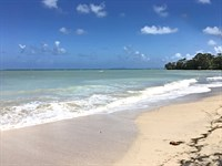 Premium Acres Expansive Beachfront : Punta Laurel : Panama