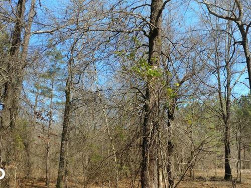 Hunting Land Adjoining Lake Nimrod : Rover : Yell County : Arkansas
