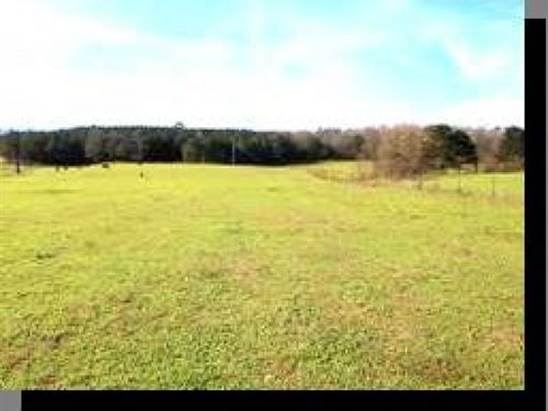 302 Acres In Leake County : Carthage : Leake County : Mississippi