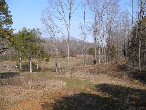 41.09 Ac. Hunting Land : Coldwater : Tate County : Mississippi