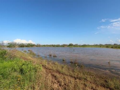 Cattle Ranch Auction - 1912 Acres : Electra : Wichita County : Texas
