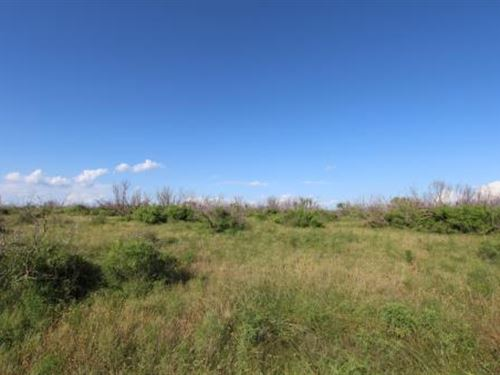Cattle Ranch Auction - 590 Acres : Electra : Wichita County : Texas
