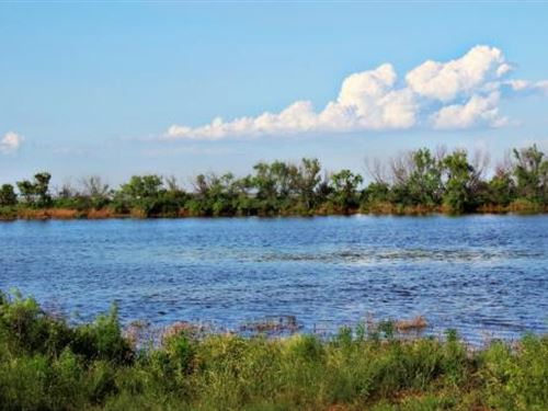 Cattle Ranch Auction - 685 Acres : Electra : Wichita County : Texas
