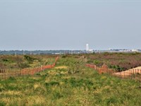 Cattle Ranch Auction - 315 Acres : Electra : Wichita County : Texas