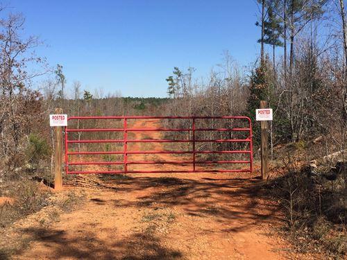 Hunting Paradise On Mayo Road : Norwood : Warren County : Georgia
