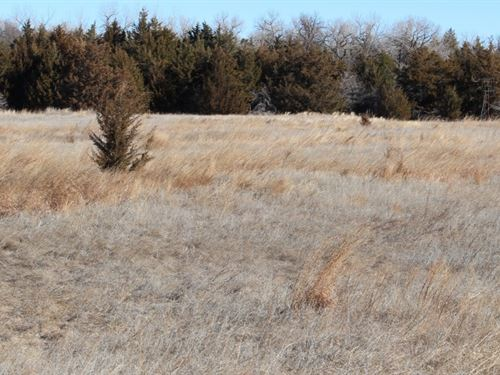 Brady River Bottom Ranch : Brady : Lincoln County : Nebraska