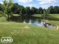 278 Acre Cattle Ranch : Bolton : Hinds County : Mississippi