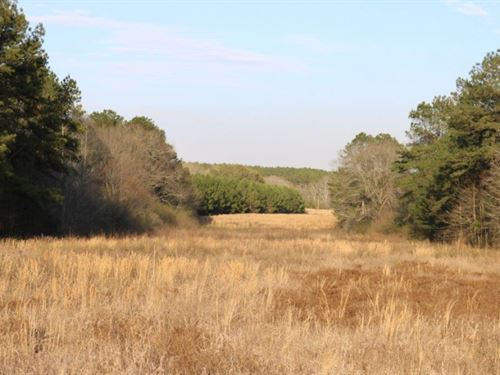 116.39 Acres In Marion And Jefferso : Columbia : Jefferson Davis County : Mississippi