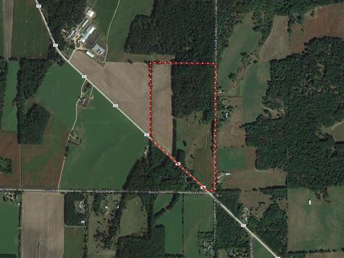67 Acres Hunting And Buildable : Wisconsin Dells : Columbia County : Wisconsin