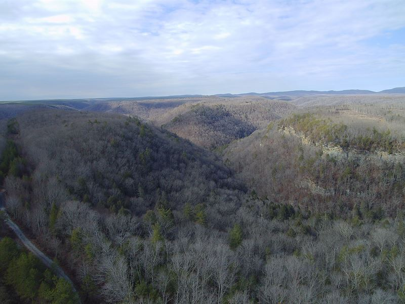393 Acres Near Grandview : Grandview : Rhea County : Tennessee