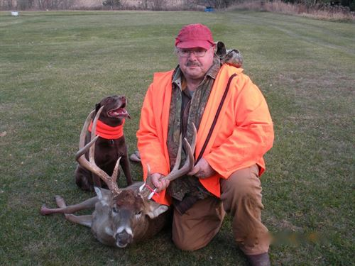 Phenomenal Hunting Property Sw Wi : La Farge : Vernon County : Wisconsin