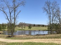 43.23+/- Acre Cattle Farm : Glenwood : Pike County : Arkansas