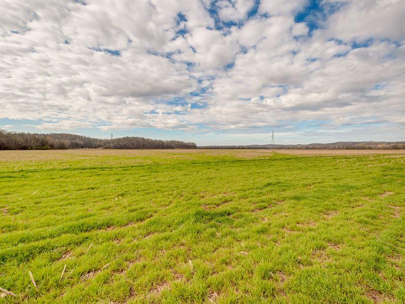 146 Ac Farm On The Buffalo River : Hurricane Mills : Humphreys County : Tennessee