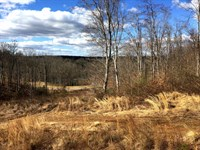 Building Lots, Sml - 143.7 Acres : Goodview : Bedford County : Virginia