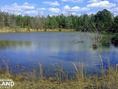 CR 65 Hunting & Fishing Investment : McKinley : Perry County : Alabama