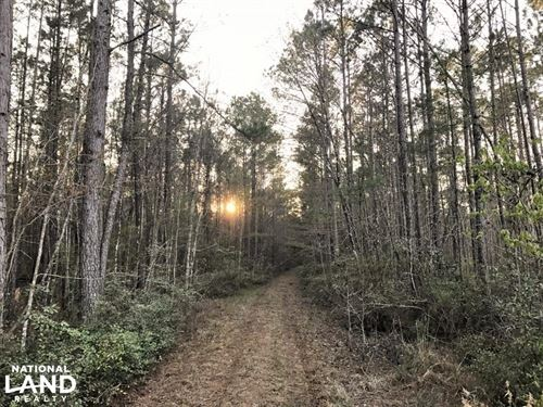 Ridgeland Hunting & Recreational LA : Ridgeland : Jasper County : South Carolina