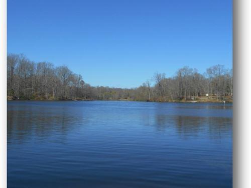 217.83 Acres In Yazoo County : Yazoo City : Yazoo County : Mississippi