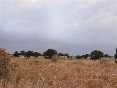 246 Acres For Sale In Trinidad, Co : Trinidad : Las Animas County : Colorado