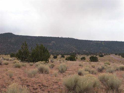 105 Acres Mary Cox Ranch : Trinidad : Las Animas County : Colorado