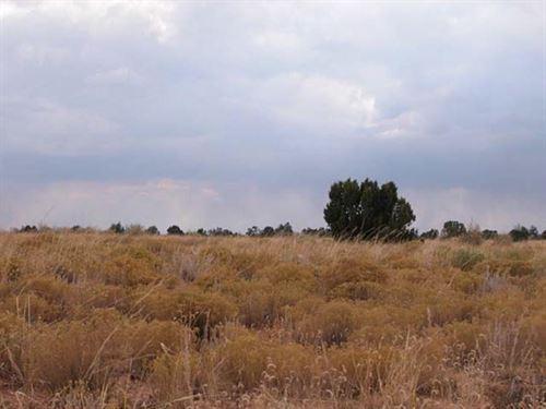 80 Acres In Thatcher Pinon Canyon, Co : Thatcher Pinon Canyon : Las Animas County : Colorado