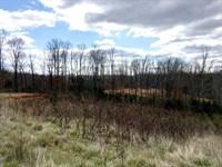 Building Lots, Sml - 9.04 Acres : Goodview : Bedford County : Virginia