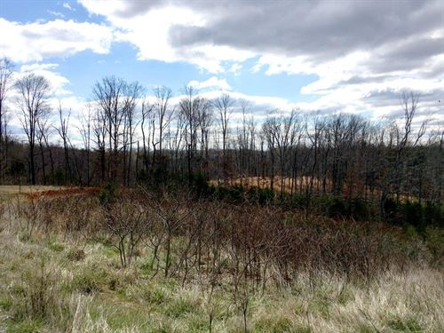 Building Lots, Sml - 9.04 Acres : Goodview : Bedford County : Virginia
