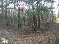 29 Ac Green Gable Rd Tract : Terry : Hinds County : Mississippi