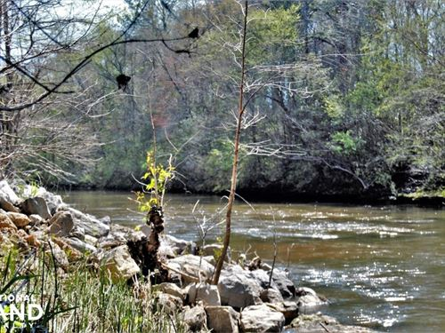 Sepulga River Tract : Evergreen : Conecuh County : Alabama
