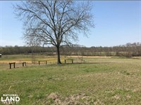 Buttahatchee River Horse Farm : Beaverton : Lamar County : Alabama