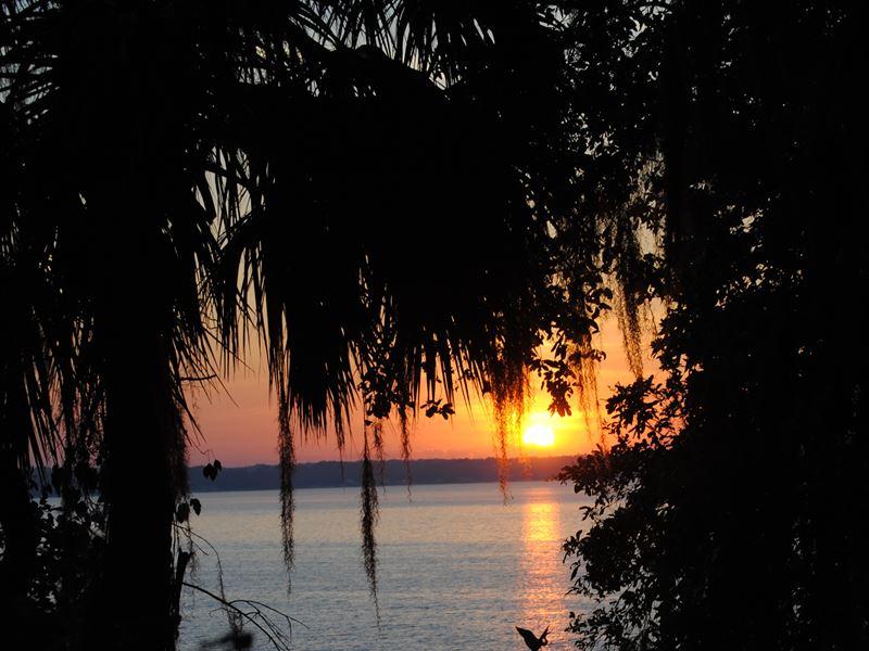 Lakefront, Custom Home, Citrus Grov : Ocklawaha : Marion County : Florida