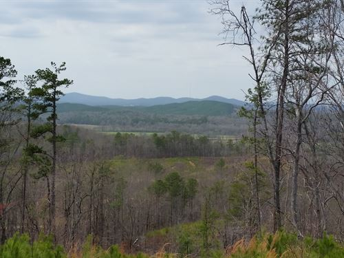 200+/- Acres Timberland Tnf : Munford : Talladega County : Alabama