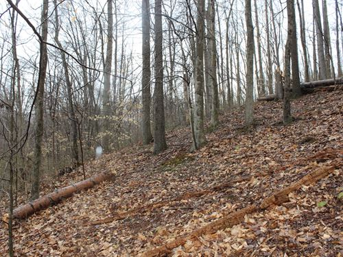 Davis Chapel Rd - 5.611 Acres : Logan : Hocking County : Ohio