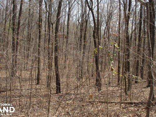 Brookwood Homesite, Timber, And Hun : Brookwood : Tuscaloosa County : Alabama