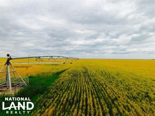Irrigated Farm Land For Sale - Kit : Vona : Kit Carson County : Colorado